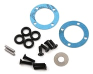Team Losi Racing 22X-4 Differential Seal & Hardware Set   product-also-purchased