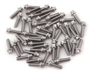 Vanquish Products Scale Beadlock Ring Screw Kit (Stainless) (50) | product-also-purchased