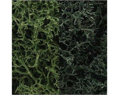 Woodland Scenics Lichen Bag, Dark Green Mix/165 cu. in.